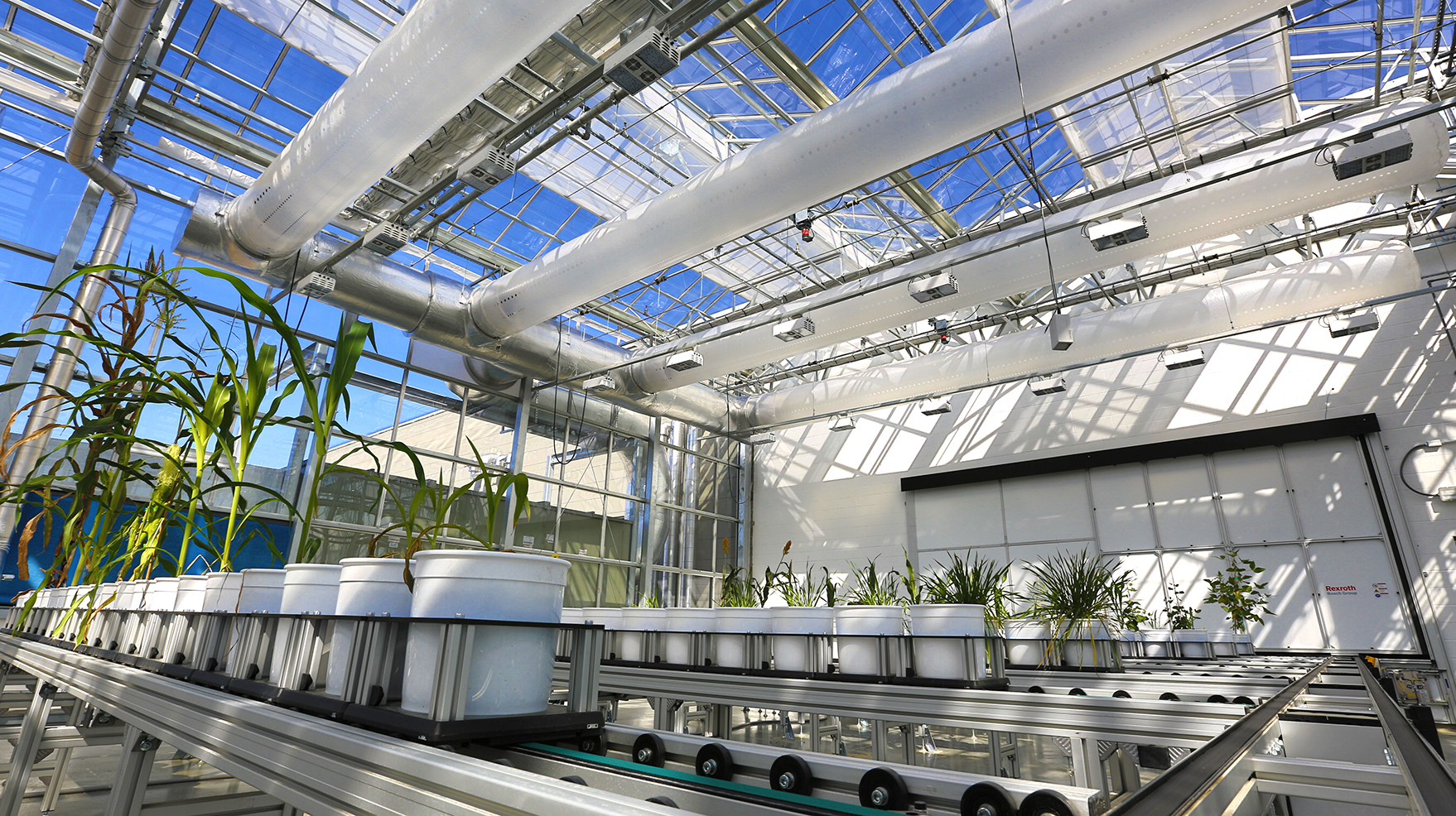 Lincoln Of Troy >> Researchers offer preview of Innovation Campus greenhouse | Nebraska Today | University of ...