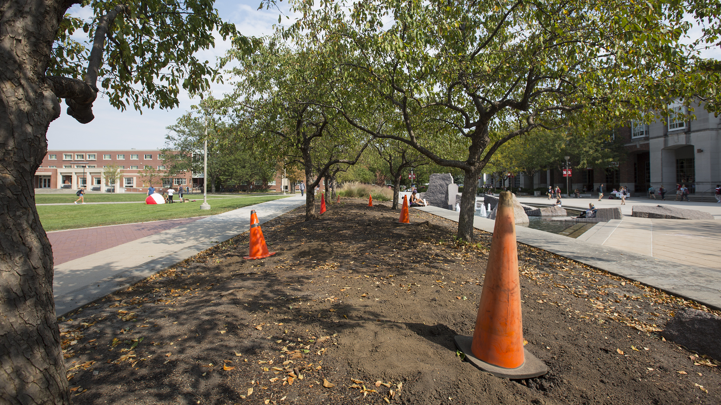 Medium image of construction cones mark spaces where poles will be placed for nebraska u0027s new hammock hangout  work  troy fedderson   university  munication