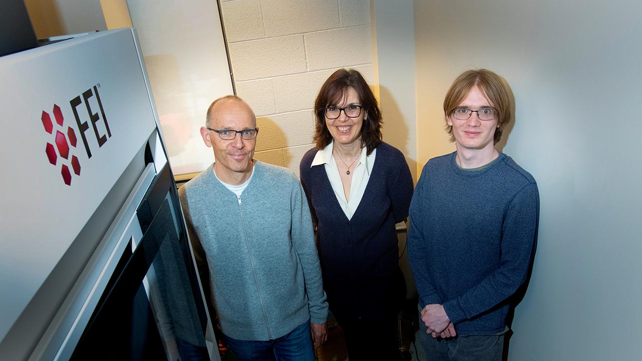Descubre un giro perfectamente imperfecto en el crecimiento de nanocables (ING)