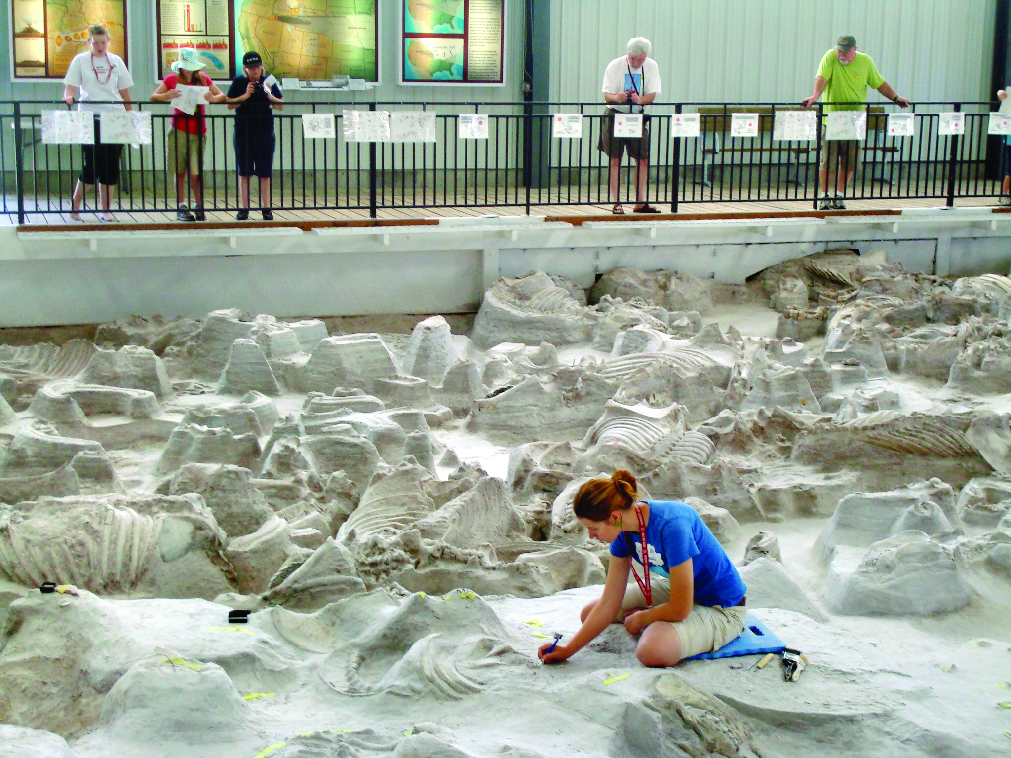 Ashfall S Fossil And Artifact Identification Day Is Aug 9