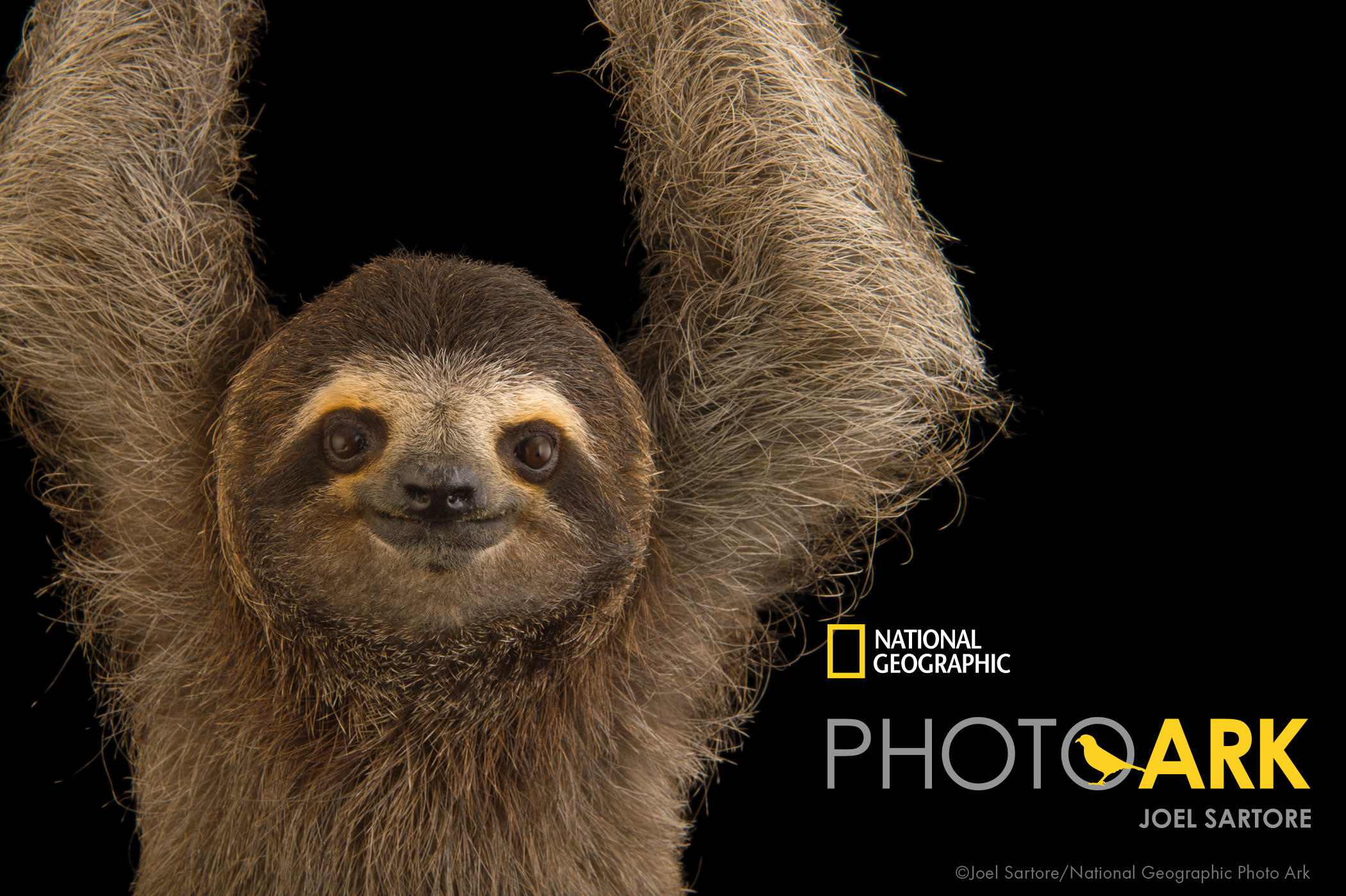 Exhibit To Feature Sartore S National Geographic Photos