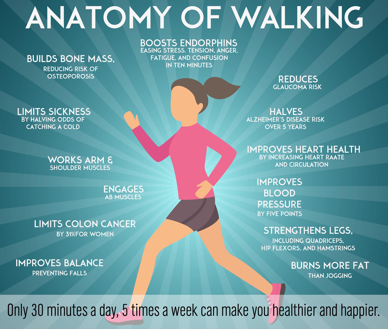 Wellness Initiative Takes Walking Paths Indoors