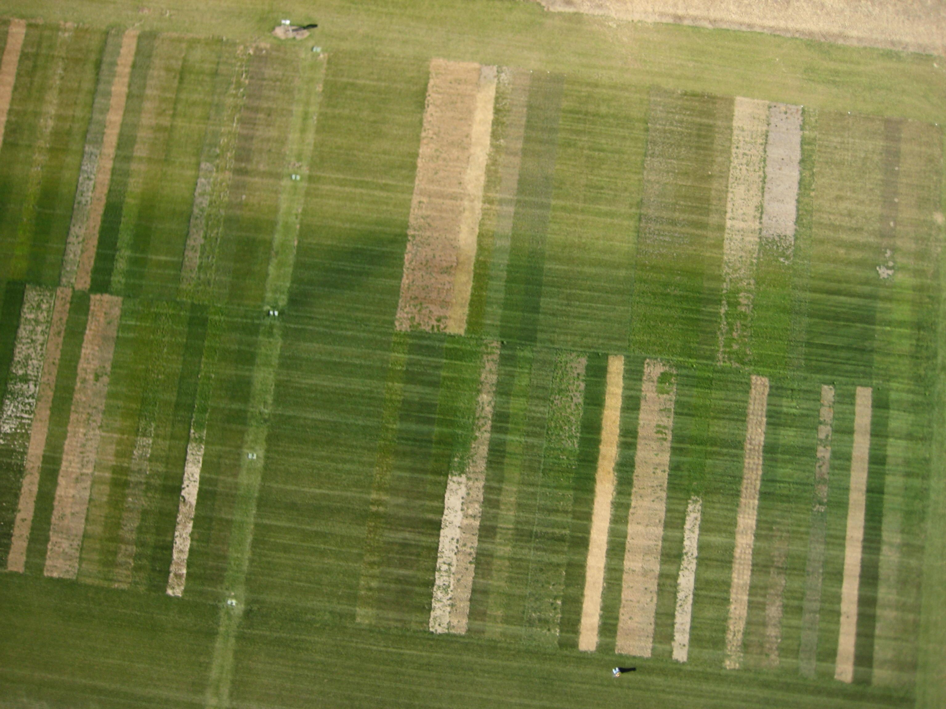 Lincoln Nebraska News >> Heuermann panel examines agriculture leadership   Nebraska ...