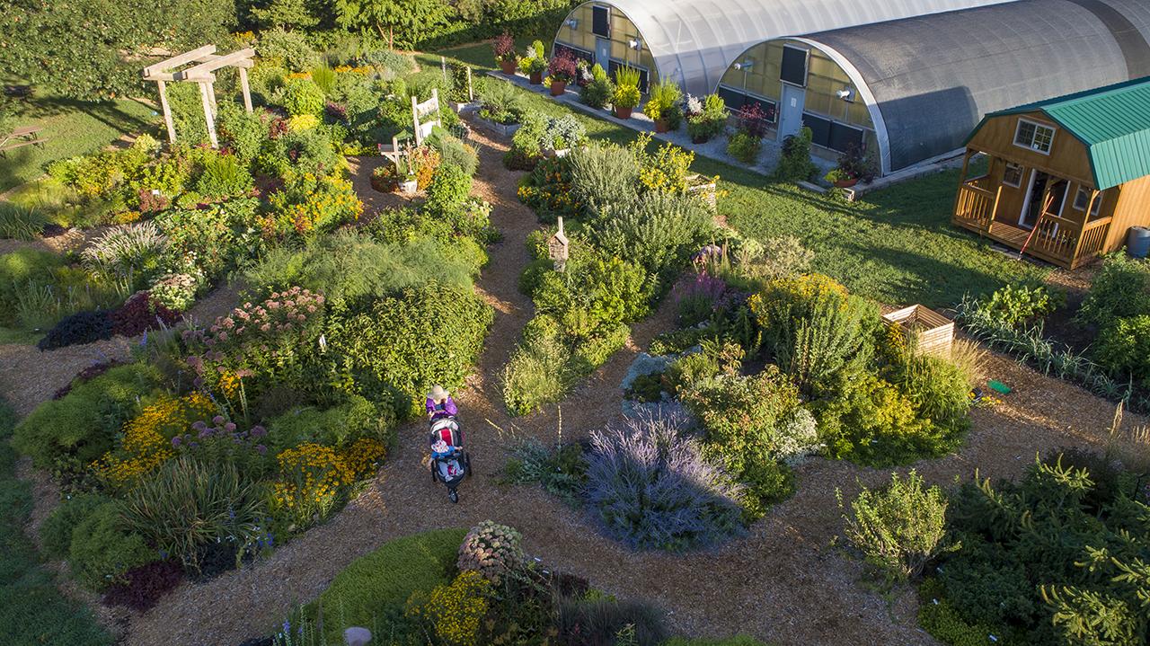Powers Cultivates Sense Of Community At Backyard Farmer Garden Nebraska Today University Of Nebraska Lincoln Backyard farmer garden unl