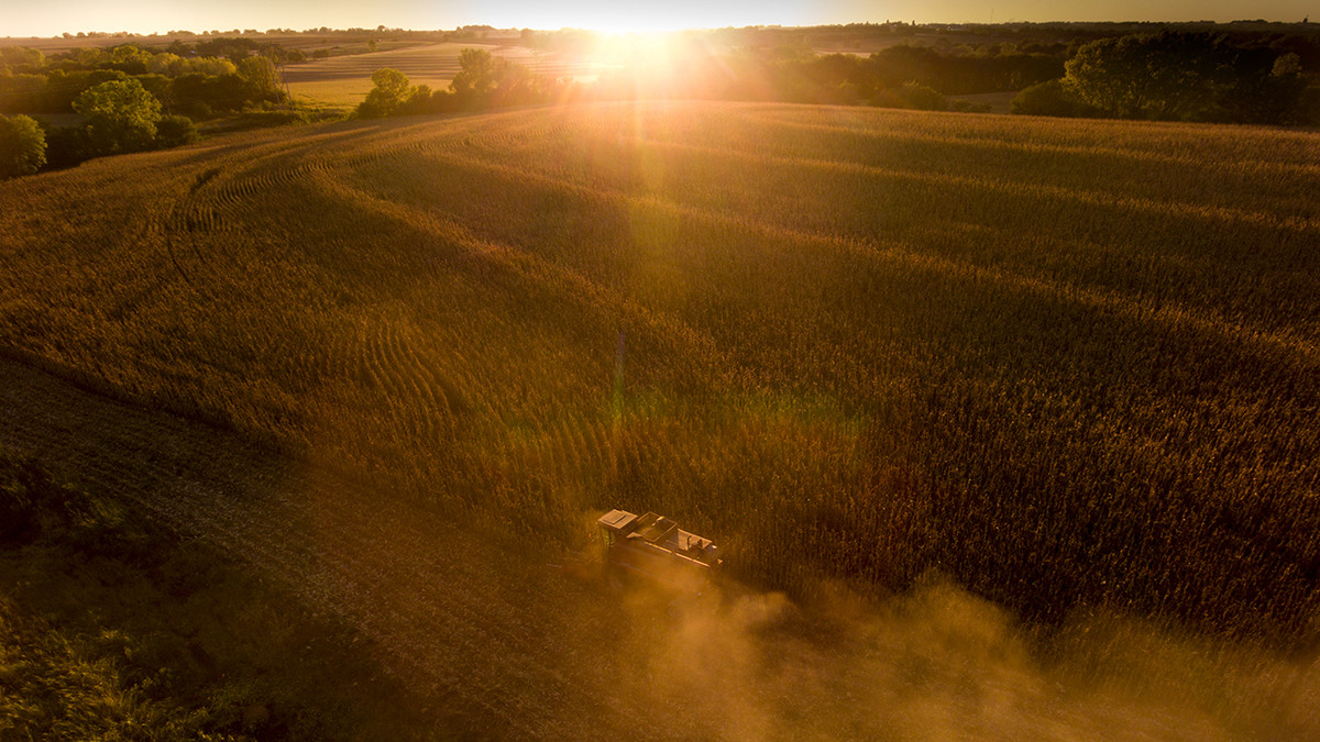 Study: Climate effects on ag yields vary by location, crop