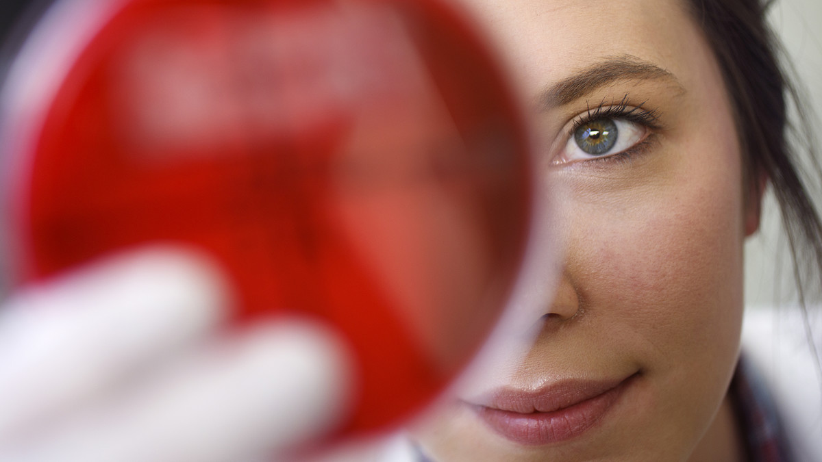 Discovery, achievement, recognition: the year in Husker research