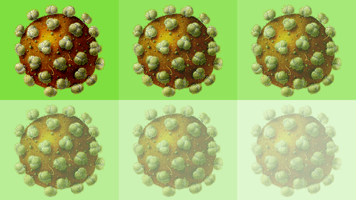 'On/off' switch brings researchers a step closer to HIV vaccine
