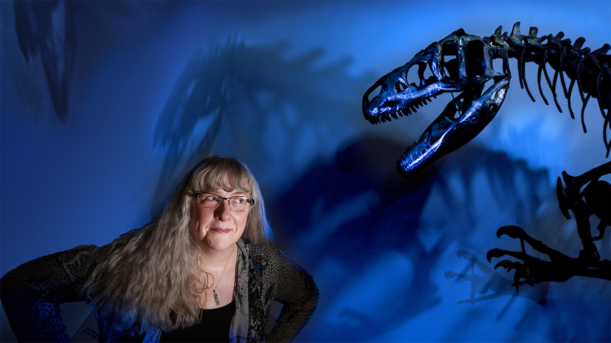 Offspring of T. rex, mega-dinos took food from mouths of modest-sized species