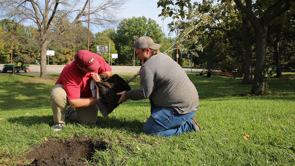 Huskers plant 150 trees for Nebraska U's 150th year