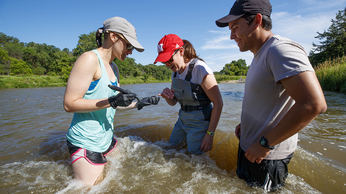 Summer UCARE project ignites Husker's passion for sustainability