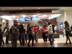 Professor Dance's Introduction to Sociology Flashmob at University of Nebraska-Lincoln.