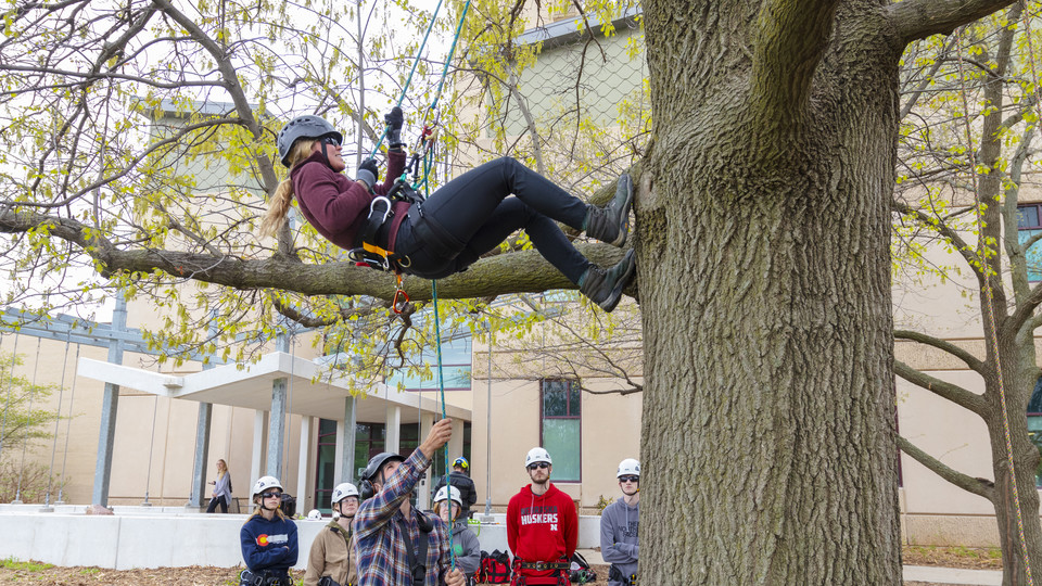 Students in arboriculture learn to climb trees safely during class at the School of Natural Resources. | Craig Chandler, University Communications