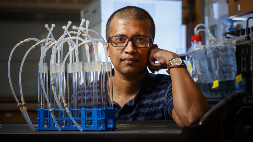 Rajib Saha, assistant professor of chemical and biomolecular engineering, has received an NSF CAREER Award to study how an unusually versatile bacterium can be harnessed to more efficiently break down plant waste. (University Communication photo)