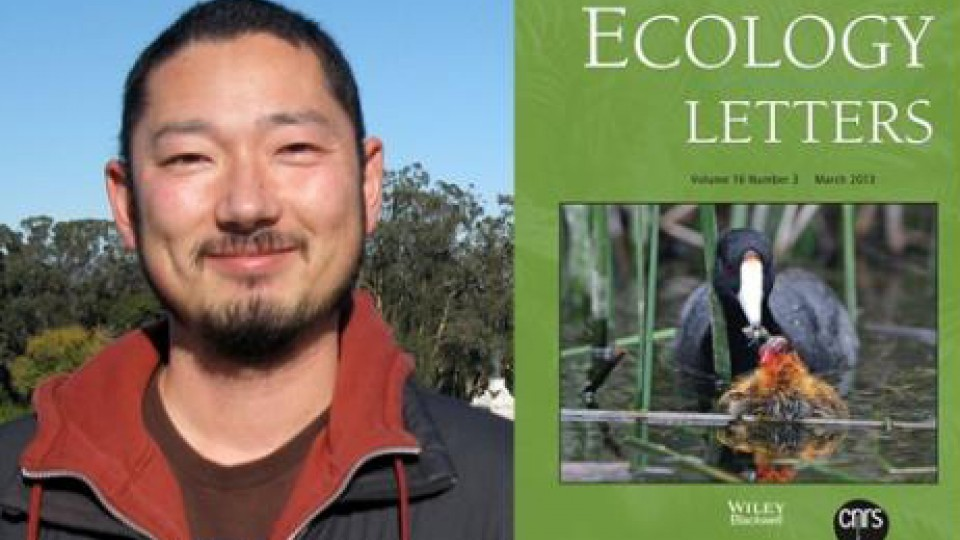 The research of Daizburo Shizuka is featured in Ecology Letters.