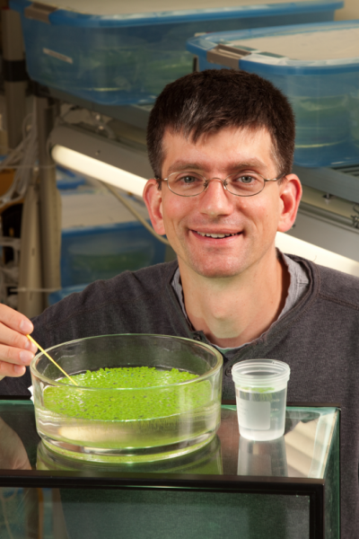 Chad Brassil, assistant professor of biological sciences, earned a five-year, $531,141 Faculty Early Career Development award from the NSF.