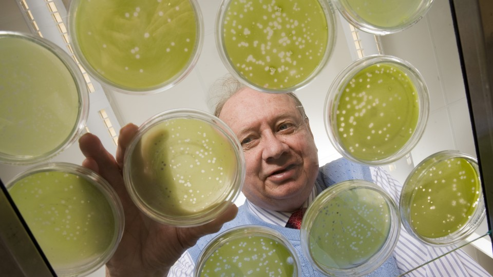 James Van Etten is the William Allington Distinguished Professor of Plant Pathology at UNL and a co-director of the Nebraska Center for Virology.