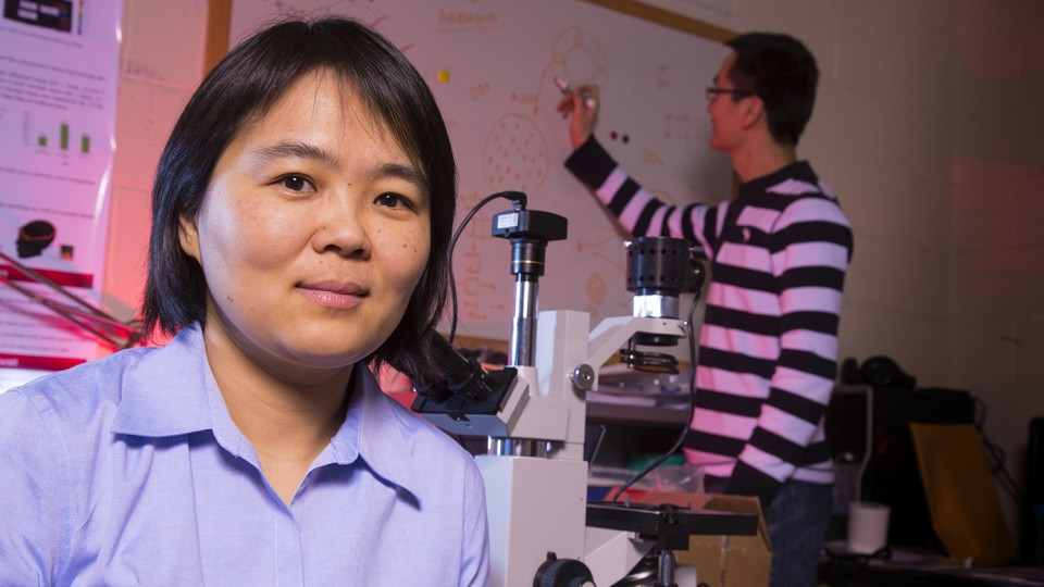 Linxia Gu, associate professor of mechanical and materials engineering, is lead author in a study that examines how improvised explosive devices impact blood vessel networks and can lead to traumatic brain injury.
