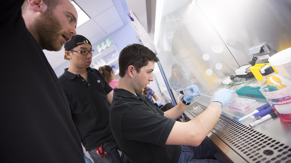 Nebraska students work in a biological systems engineering lab on campus. A new partnership between NU's National Strategic Research Initiative and Los Alamos National Laboratory is designed to expand biodefense instruction across the University of Nebraska.