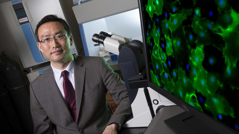 Jung Yul Lim, an assistant professor of mechanical and materials engineering, has received a five-year, $430,554 Faculty Early Career Development Program Award from the National Science Foundation for his research.