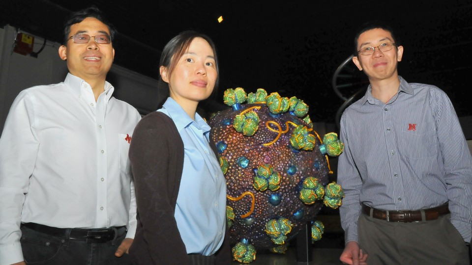UNL researchers (from left) Qingsheng Li, Wei Niu and Jiantao Guo have received a $1.9 million grant to further research into a technique that may lead to a more effective HIV vaccine.