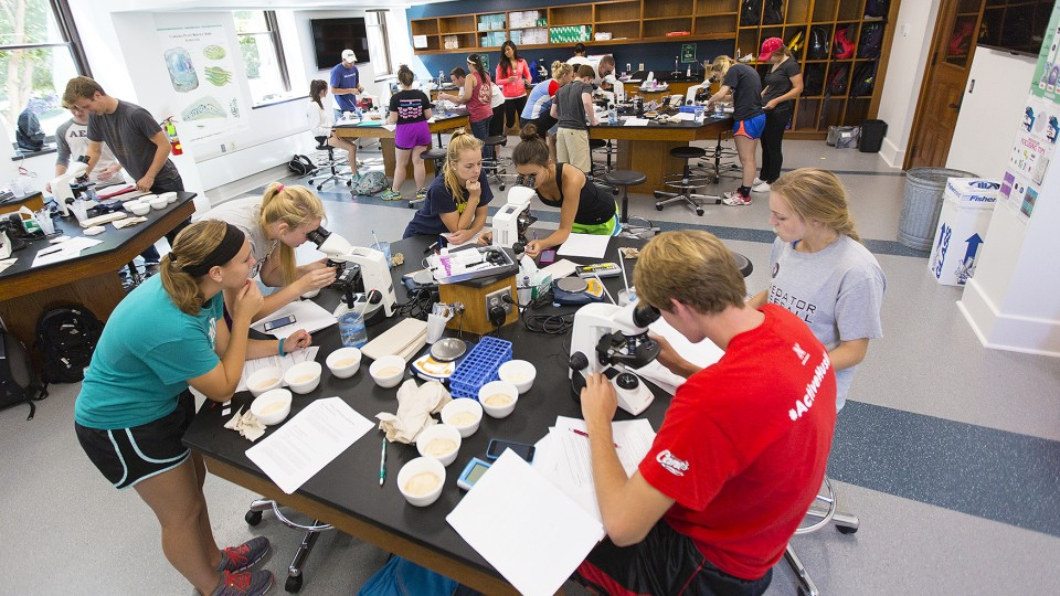 Students take part in a life sciences lab in the renovated space inside UNL's Brace Hall. The project has earned honors from the Preservation Association of Lincoln.