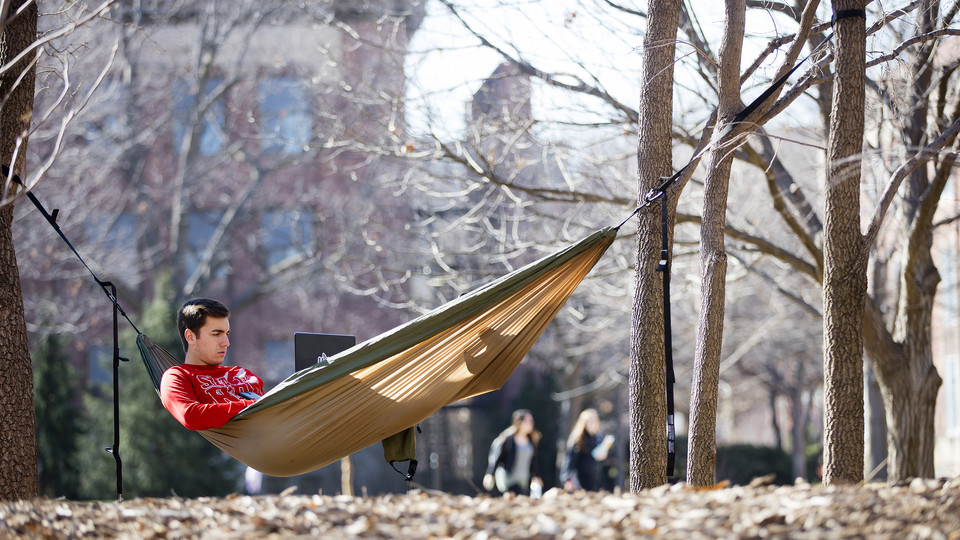 Tyler Reedier hangs out among the trees between Canfield Administration Building and Andrews Hall in spring 2016. The university is creating an area for hammocks by Broyhill Fountain.