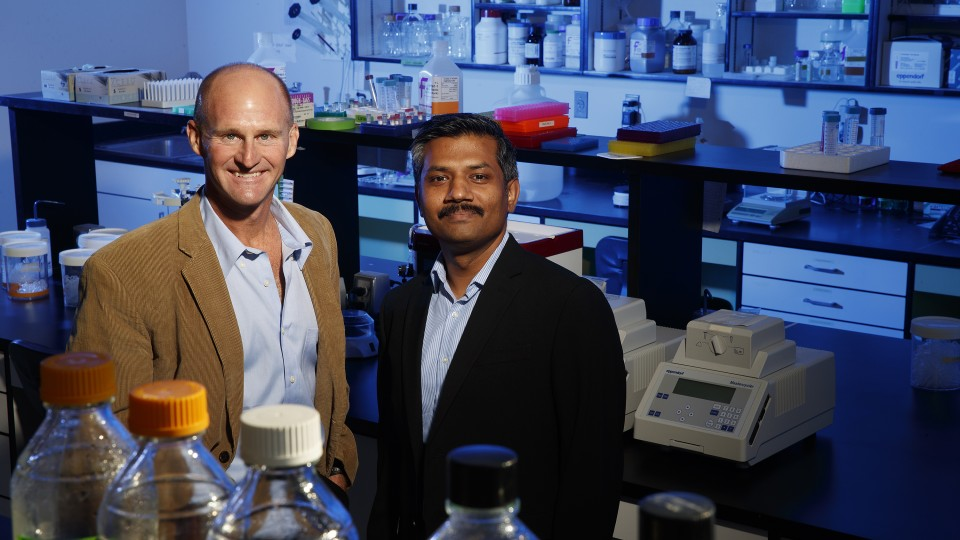 Jay Storz (left), Susan J. Rosowski professor of biological sciences, and Chandrasekhar Natarajan, research assistant professor in biological sciences.