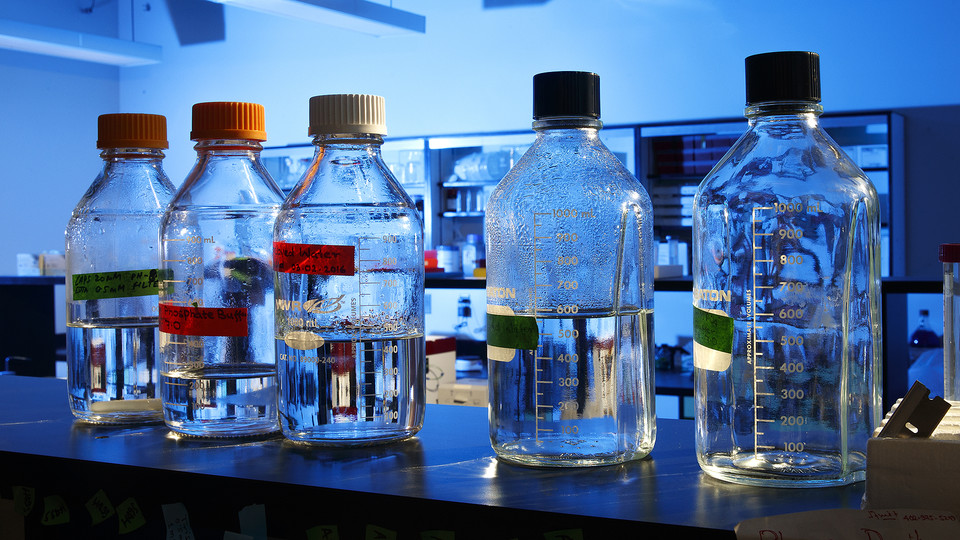 Bottles sit in the lab of Nebraska's Jay Storz, one of four Husker researchers who have been named AAAS fellows. Others honored include Roger Bruning, David Hage and Jim Lewis. Since 2016, 17 Nebraska faculty have earned the AAAS honor.