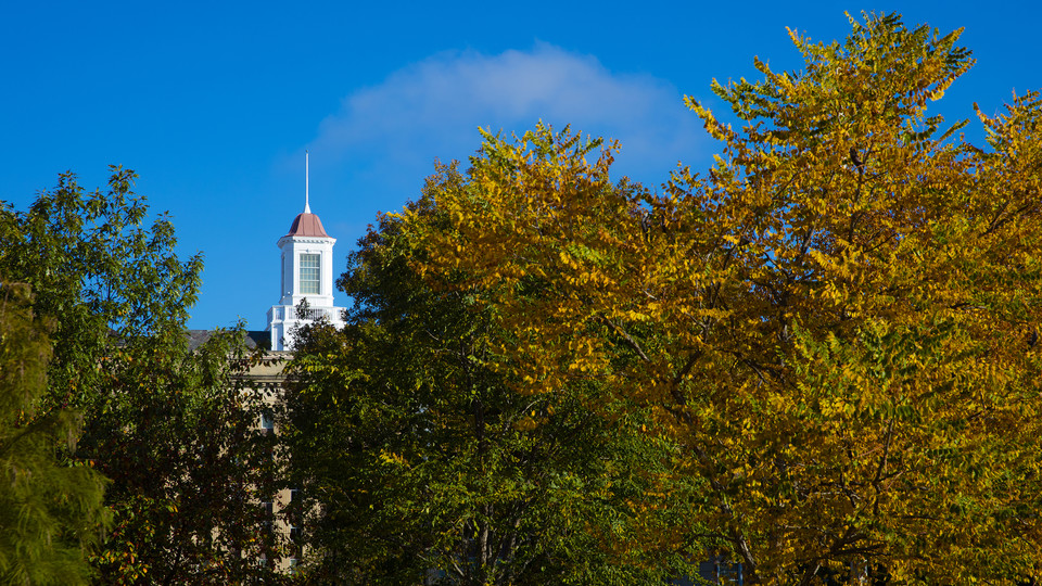 Fall leaves frame the Love Library cupola on City Campus.