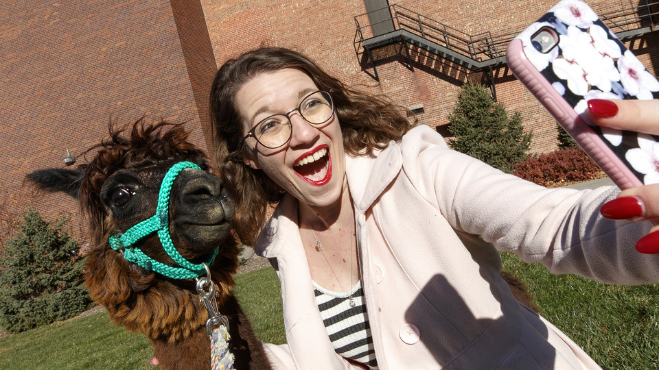 Alison Finn, a secondary English education major, takes a selfie with Mahogany the alpaca. Finn is designing a costume to dress a human like a alpaca.