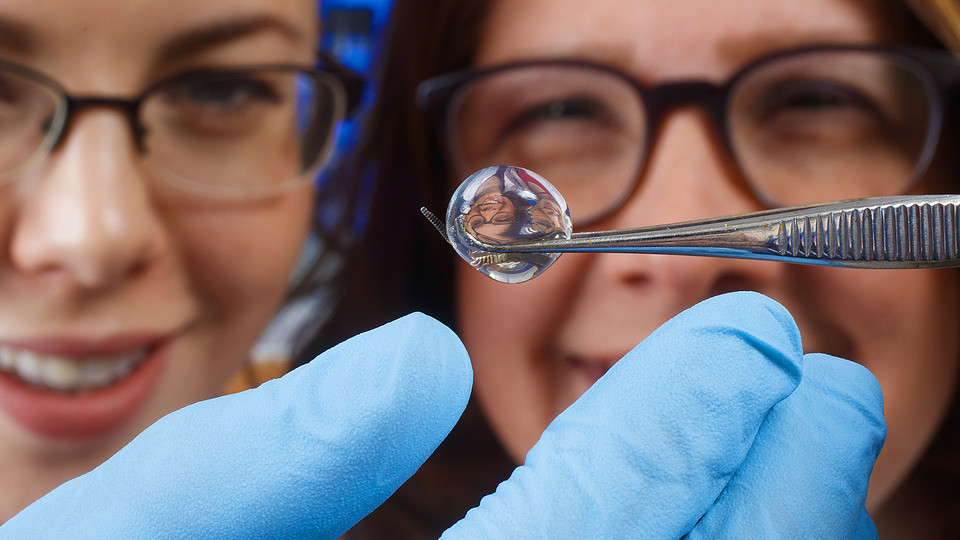 Nebraska's Angela Pannier and Amy Mantz are refracted in a hydrogel in the Pannier Lab.