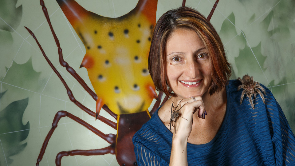Arachnid researcher Eileen Hebets will deliver the next Nebraska Lecture at 3:30 p.m. Nov. 7 in the Nebraska Union Auditorium, The talk is free and open to the public.