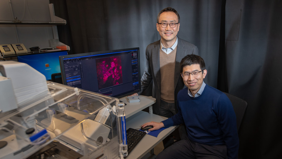 Ruiguo Yang (seated) and Jung Yul Lim have received a three-year, $439,584 grant from the National Science Foundation grant to work on understanding how linked individual cells communicate with each other as they respond to physical changes in their shared environment.