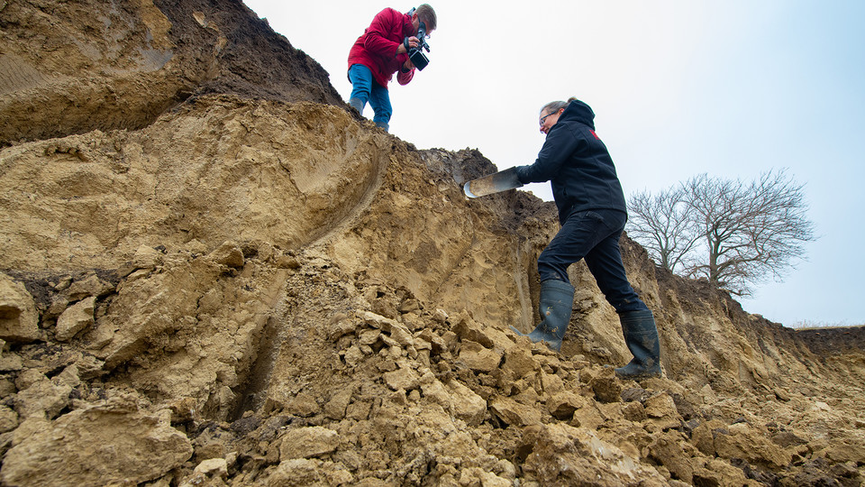 Judy Turk, an assistant professor of natural resources, digs into a profile of soil outside of Lincoln as Curt Bright films the project. Like other campus instructors, Turk is using video as a teaching mechanism to transition a lab course to remote access learning.