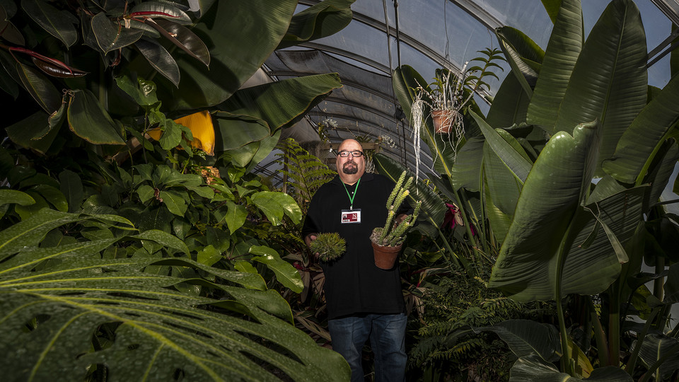 """Jeff Witkowski, greenhouse manager for Agricultural Research Division, holds a couple of his favorite specimens in the East Campus """"jungle."""" The greenhouse, which is filled with tropical plants, a banana tree and succulents, is used as a teaching classroom. The facility, which is among greenhouses maintained by a team led by Witkowski, has been featured in remote teaching lessons through the end of the spring semester."""