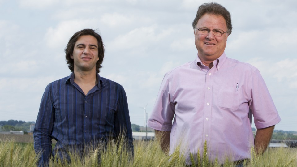 Agronomists Patricio Grassini (left) and Ken Cassman are part of the UNL team that developed the Global Yield Gap and Water Productivity Atlas through an international research collaboration.