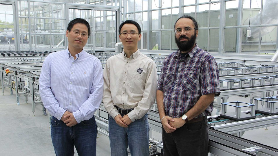 Hongfeng Yu (from left), Yufeng Ge and Harkamal Walia have received a National Science Foundation grant to develop a multi-wavelength laser ranging and imaging instrument for phenotyping plant shoots at the whole-plant level.