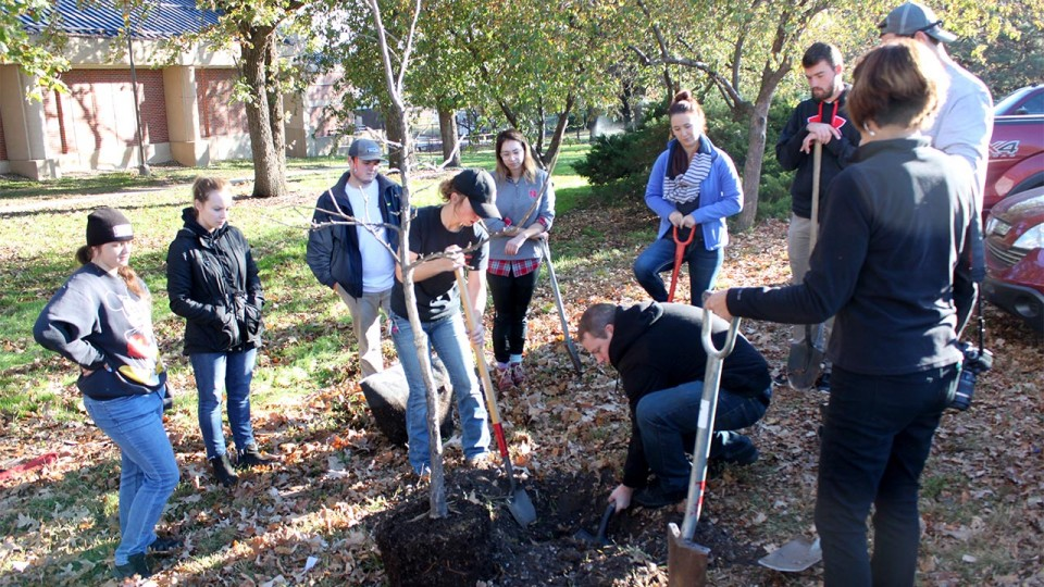Students in Kim Todd's landscape design class plant trees on East Campus in November. The class works closely with Landscape Services on planting projects around campus.