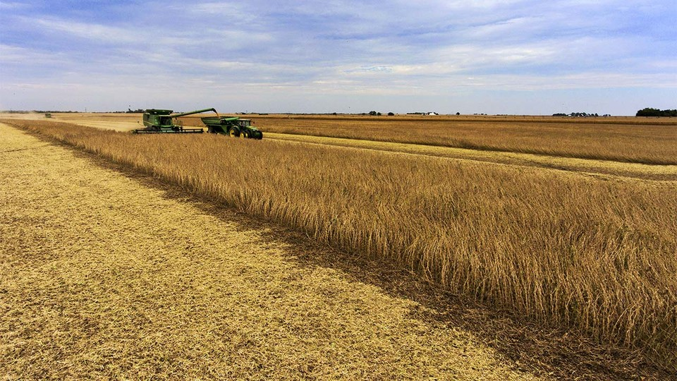 The average Nebraska agricultural land value has declined by about 10 percent over the past year.