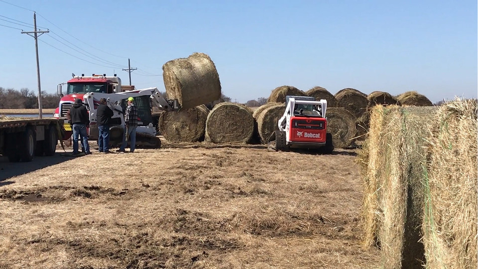 Donated hay bales accumulate at the Eastern Nebraska Research and Extension Center near Mead.