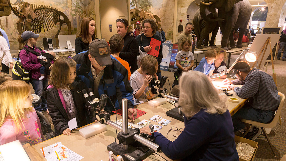 Dinosaurs and Disasters is 9:30 a.m. to 4:30 p.m. Feb. 8 at the University of Nebraska State Museum-Morrill Hall.