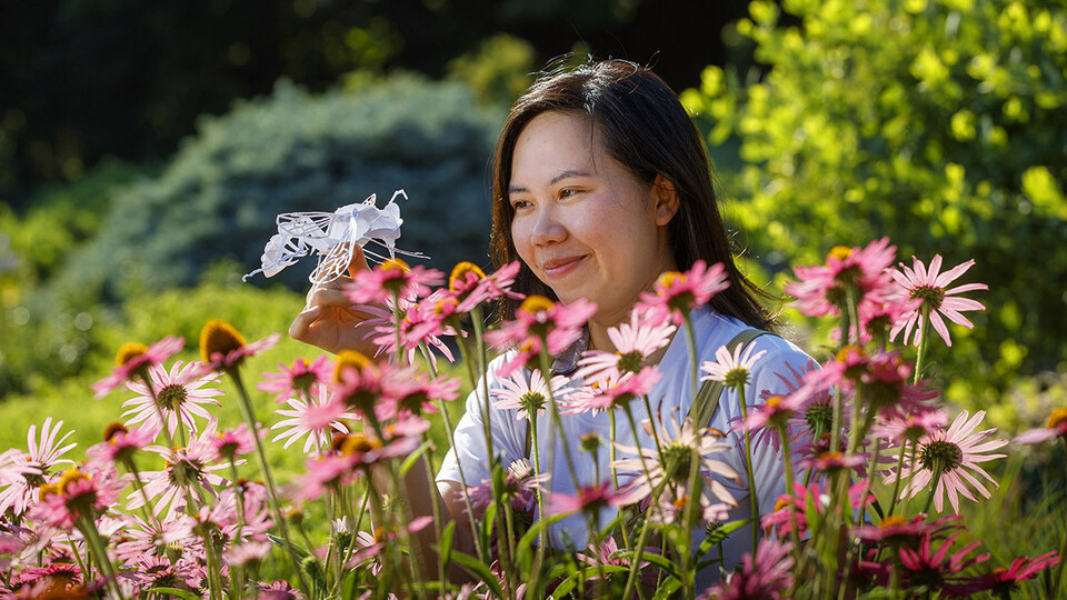 Mia Luong, a graduate student in entomology, creates intricate 3D insect art in her free time. She plans to use the art to raise funds for the Bruner Club.