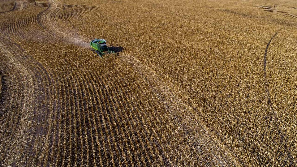 Four in 10 rural Nebraskans surveyed say their economic well-being is dependent on the success of production agriculture, according to the 2020 Nebraska Rural Poll.