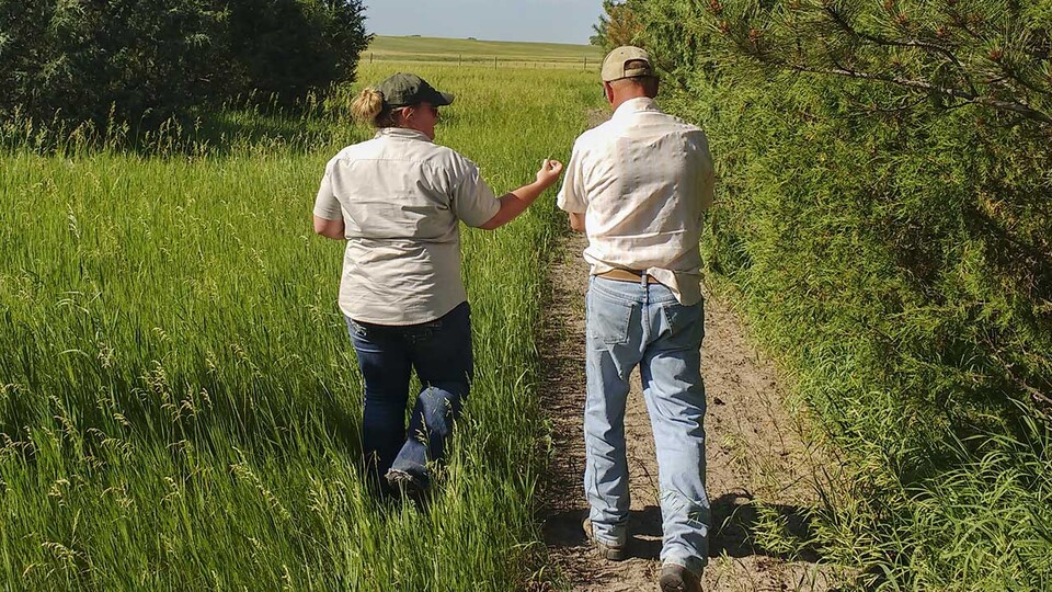 Funds will be available as early as spring 2021 for qualifying landowners to undertake a variety of tree-related management in Nebraska.