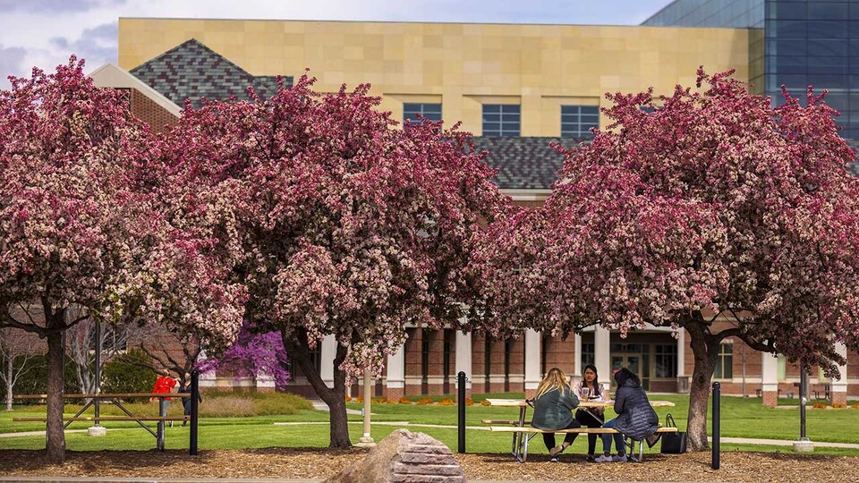 More than 6,800 Husker students have been named to the Deans' List for the spring semester of the 2020-21 academic year.