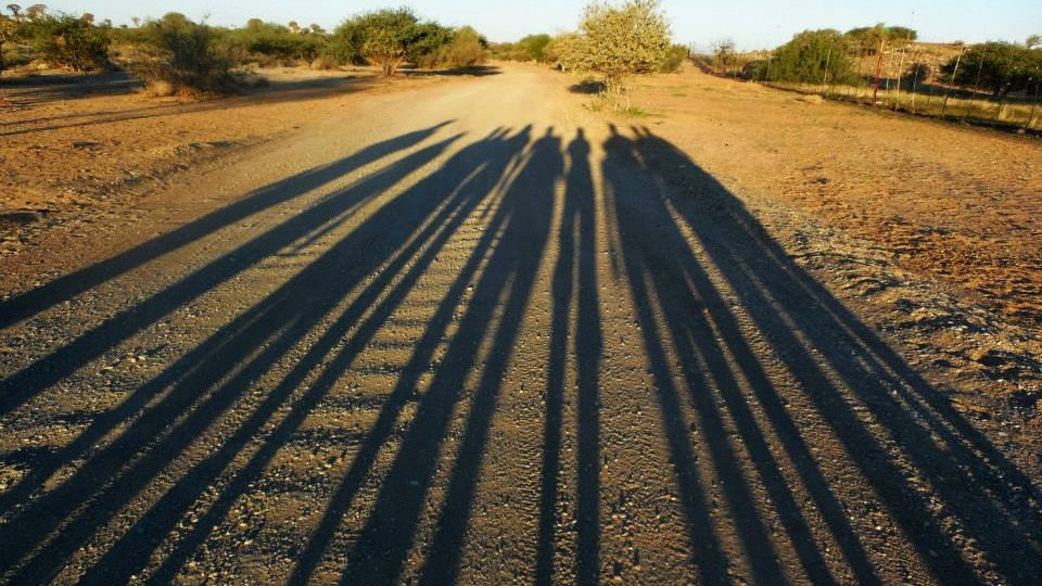 Shadows of Natural Resources students and faculty who went on a summer study abroad trip stretch across an African road. The program, led by Mark Pegg and Larkin Powell, featured study of the ecology of Namibia.