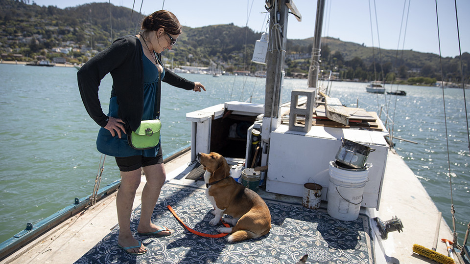 Nebraska's James Wooldridge recently earned a Hearst Award with a photo story about a woman living on a boat off the coast of San Francisco. Shown here, the woman, Kristina, tries to get her dogs into the cabin of her boat so she can make a trip to shore. Her dogs are a big reason she decided to buy a boat.