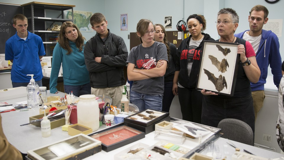 UNL's Trish Freeman (second from right) discusses Nebraska bats during a natural resources orientation class in 2014.