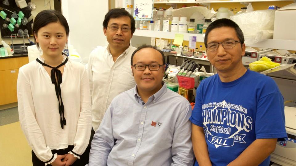 Wenjin Fan, Qingsheng Li, Zhe Yuan and Guobin Kang.