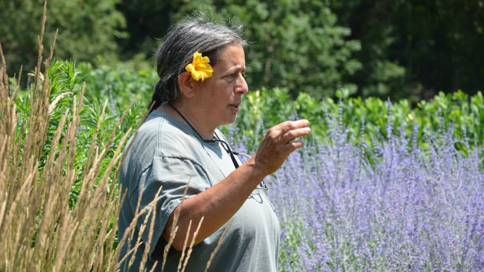 Nebraska's Emily Levine leads a tour of the gardens on East Campus. The tour is part of a free, monthly series held on the first Tuesday of the month through November.